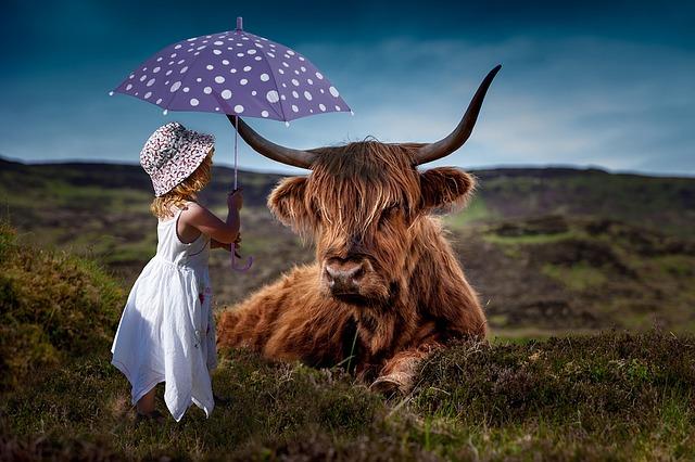 Kráva a dítě s deštníkem